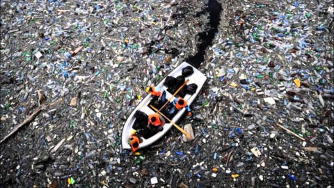 A lot of those plastic toys will end up in the North Pacific Gyre
